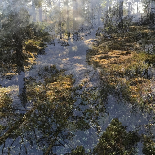 Untitled - Eurajoki Finland 2018