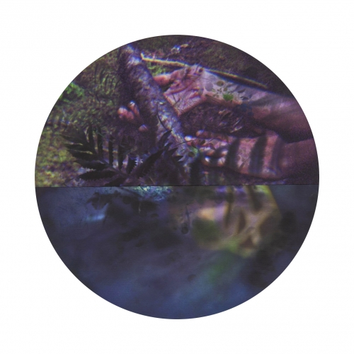 Untitled - Nova Scotia/Damascus/High falls